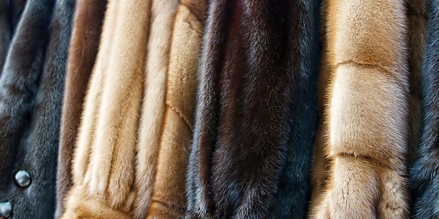 opbevaring af pels